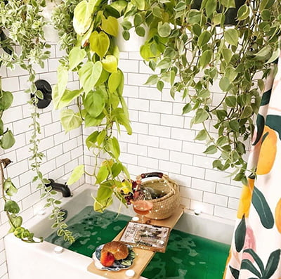 15 Best Jungle Bathroom Ideas, Jungle Bathroom Decor